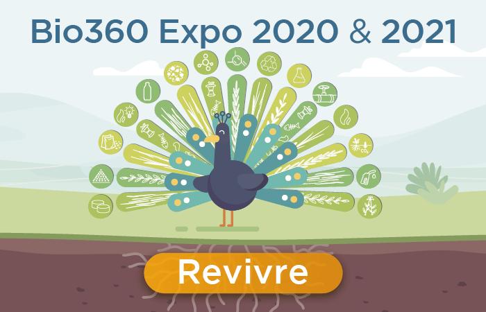 rectangle 2022 EN